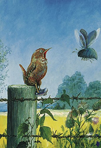 Klappkarte mit Umschlag C6- (11,5 x 17 cm) • 4707 ''Komische Vögel / Zaunkönig'' von Inkognito • Künstler: INKOGNITO © Rudi Hurzlmeier • Fantastik • Tiere