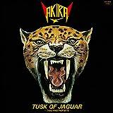 ジャガーの牙~TUSK OF JAGUAR~