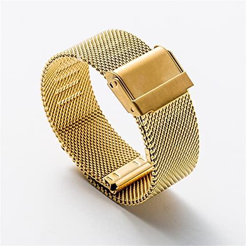 WGDPMGM Correa Reloj Correa de Acero Inoxidable 12 14 16 18 mm 20 mm 22 mm Hombres Mujeres Metal Reemplazo de la Pulsera Banda de la Banda Accesorios (Band Color : Gold, Band Width : 16mm)
