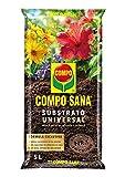 Compo Sana Substrato Universal de calidad para macetas con 12 semanas de abono para plantas de interior, terraza y jardín, Substrato de cultivo, 5 L, 37 x 23 x 5.5 cm, 8.41106E+12