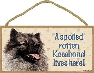 SJT ENTERPRISES, INC. A Spoiled Rotten Keeshond Lives here Wood Sign Plaque 5