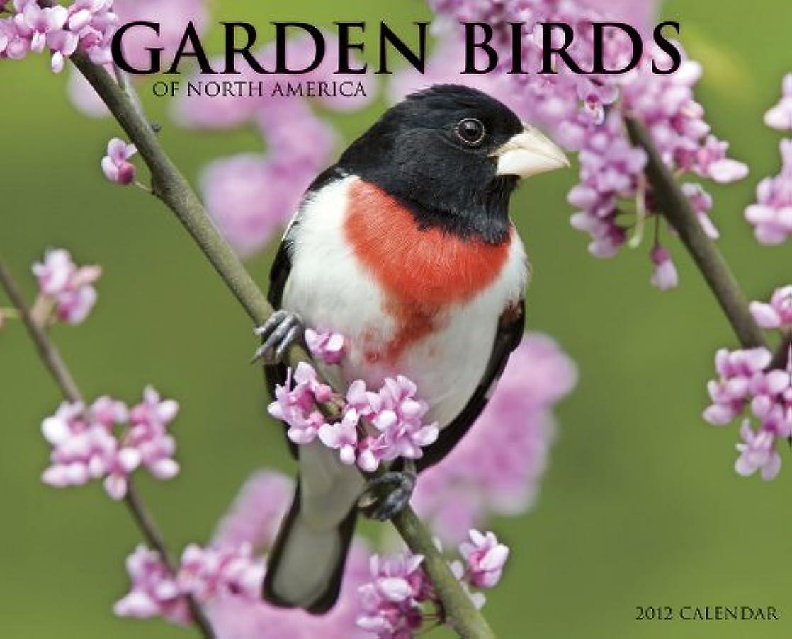 健全ランデブーオペレーターGarden Birds of North America 2012 Calendar