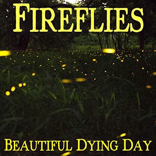 Beautiful Dying Day