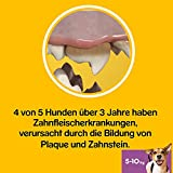 Pedigree DentaStix Fresh Hundesnack für kleine Hunde (5-10kg), Zahnpflege-Snack mit Eukalyptusöl und Grüner Tee-Extrakt, 10 Packungen je 7 Stück (10 x 110 g) - 9