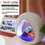 Hengyuanyi 4L Mini Aquarium Fish Tank Mini Nano avec Filtre intégré Système de lumière LED Réservoir Portable Bureau Mini Aquarium Acrylique Aquarium