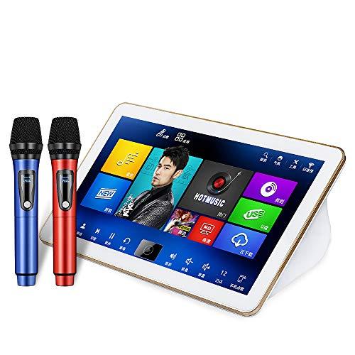 Sale!! Karaoke Machine Professional, DIANXUN Karaoke Player 18.5 inch 4K Touch Screen 2TB HDD with M...