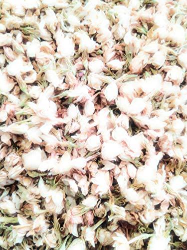 AzureGreen Jasmine Flowers, Dried Herb, 1 Oz 100% Natural No Additives