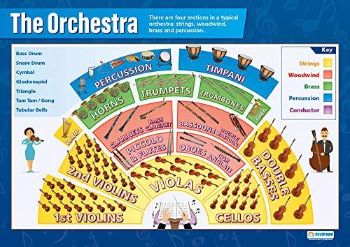 The Orchestra   Music Posters   Gloss Paper Measuring 33� x 23.5�   Music Charts for The Classroom   Education Charts by Daydream Education