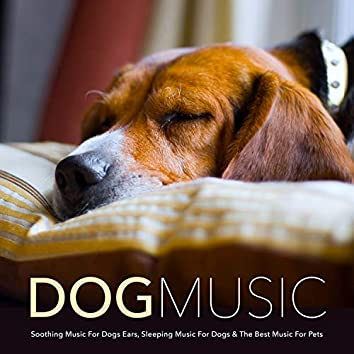 Dog Music: Soothing Music For Dogs Ears, Sleeping Music For Dogs & The Best Music For Pets