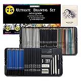 YANLAN Suministros de Arte 75 Piezas Dibujo Lápices y Dibujo Set para Adultos Artistas con boceto Dibujar lápices de carbón Lápiz Extensor para Artistas Principiantes Niños Adultos,Black