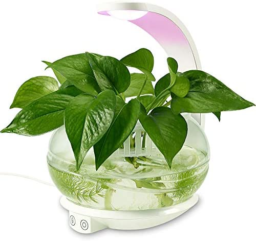 TORCHSTAR LED Indoor Garden Kit Plant Grow Light Fish Tank Design Portable C Shape Basket Sensitive product image