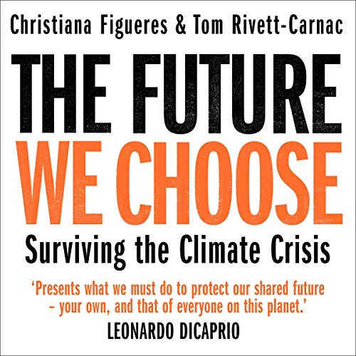 The Future We Choose cover art