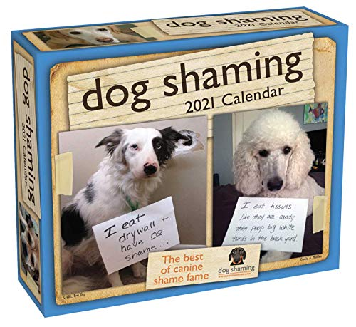 Dog Shaming 2021 Day-to-Day Calendar