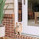 PetSafe Puerta corredera de Cristal para Mascotas, pequeña