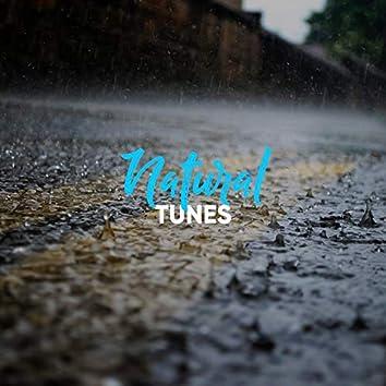 # 1 Album: Natural Tunes