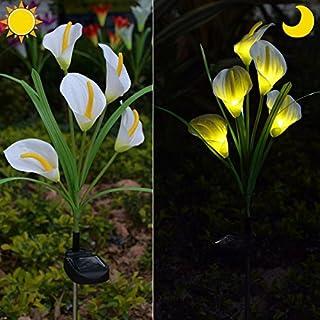 Chasgo Solar Decorative Garden Stake Light Outdoor, Led Lighting Calla Lily Flower Solar Graden Light Outdoor Stake, White...