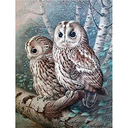 Berrd 5D DIY Diamond Painting Kit Runder Strass Cute owl Kreuzstich Mosaik Kunst Wanddekoration-Square Drill,25x30cm