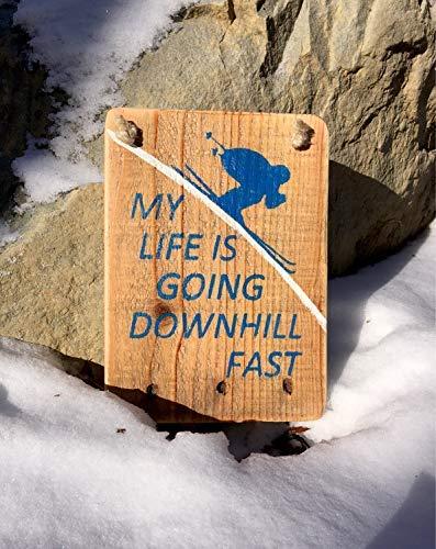 Zhaoshoping Skifahren Schild Skifahren Ski Lodge Reclaimed My Life is Going Downhill Fast Skier Schild I Love to Ski Snowboard Mountain Sign Sprüche Home Decor Wall Art Plakette Geschenk