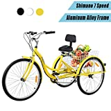 Best Adult Tricycles - Yonntech 26inch Adult Tricycle 7 Speed Aluminum Frame Review