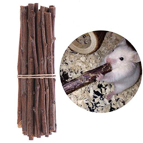BulzEU Jouet à mâcher en bois pour hamster, rat, gerbille, souris et petits animaux