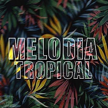 Melodia Tropical
