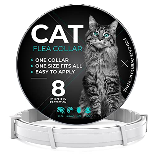 Flea and Tick Prevention for Cats - One Size Fits All