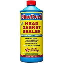 Bluedevil Head Gasket Sealer Review - Confidential Information