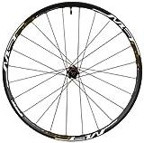 Shimano WH-MT65, Cerchio Anteriore, Nero 26\'