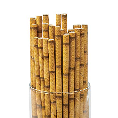 BAMBOO PAPER STRAWS (24PC) - Party Supplies - 24 Pieces
