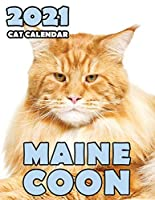 Maine Coon 2021 Cat Calendar