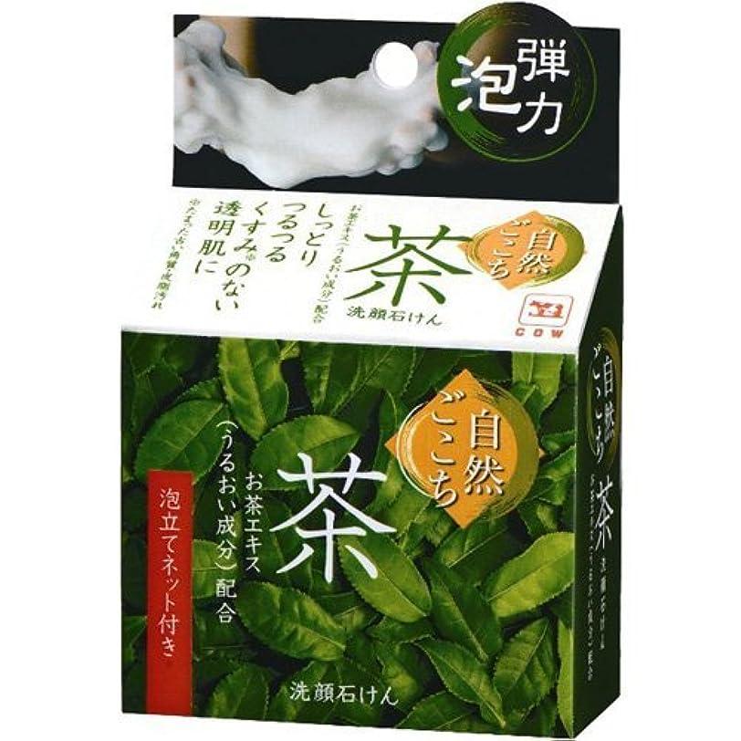 プレフィックスペストヒール自然ごこち 茶 洗顔石けん 80g x 5個セット