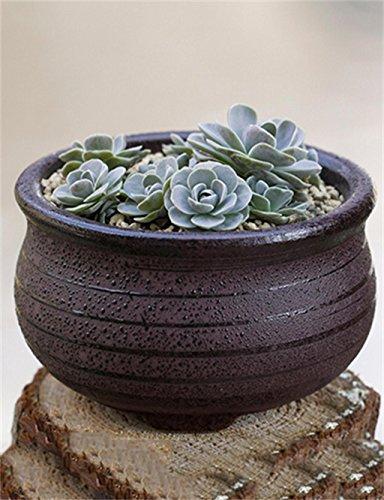 XYZ huapen XYZ Retro circolari in ceramica piante grasse Vasi, Planter Fiore delicato durevole