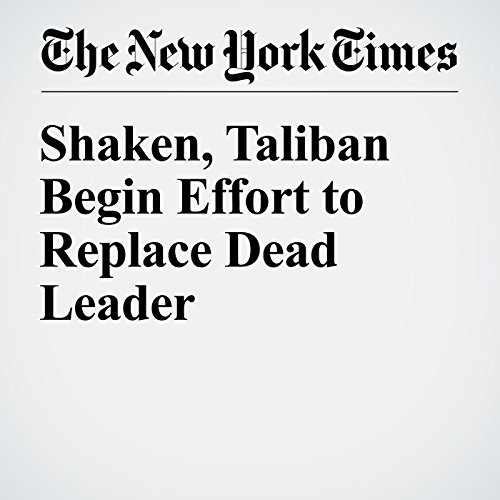 Shaken, Taliban Begin Effort to Replace Dead Leader cover art