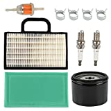 Butom 698754 273638 Air Filter with Oil Fuel Filter for Intek Extended Life Series V-Twin 18-26 HP