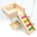 Alfie Pet - Ray Wooden Swing, Ladder and Resting Platform Set for Mouse, Chinchilla, Rat, Gerbil and Dwarf Hamster - Size: Small