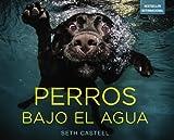 Perros bajo el agua / Underwater Dogs by Seth Castel (2014-10-30)