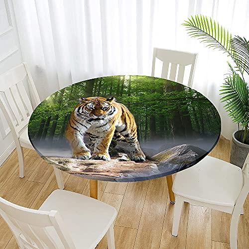 Rund bordsduk, Morbuy 3D tigertryck vattentäta bordsdukar fläckbeständiga dammsäkra torkbara bordsskydd med elastiska kanter för hemmafest kök middag (skogstiger, 180 cm)