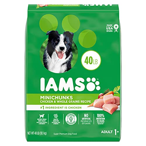IAMS Adult Minichunks Small Kibble High Protein Dry Dog Food with Real Chicken, 40 lb. Bag