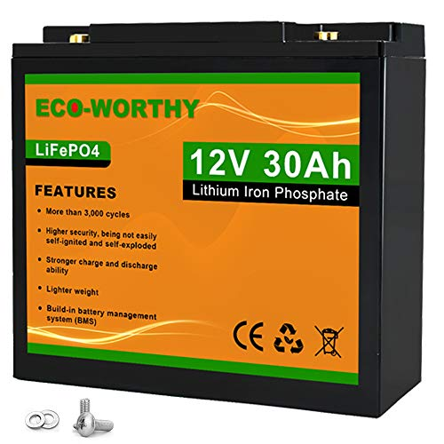 ECO-WORTHY 12V 30Ah LiFePO4 Lithium Iron Phosphate Battery Deep Cycle Rechargeable Battery with Built-in BMS, 3000+ Life Cycles, Perfect for RV, Marine, Kids Scooters, Power Wheels, Trolling Motor