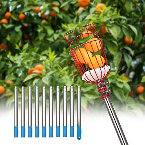 TTLIFE Recogedor de Frutas Palo 4M Herramienta Recolectora de Frutas Ajustable Recoger Frutas,con Canasta telescópica y Soporte de Esponja para Obtener Manzanas,Naranjas,Peras,Mangos etc