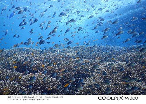 NikonデジタルカメラCOOLPIXW300BKクールピクス1605万画素ブラック防水耐寒防塵