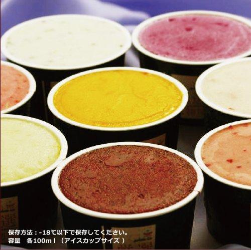 NORUCA 果物屋さんのアイスクリーム&シャーベット(8個入)(黒潮マンゴシャーベット、静岡マスクメロンシャーベット、国産レモンシャーベット、グレープフルーツ(ルビー)シャーベット、赤肉メロンアイス 、いちごミルク、イタリアンチョコ、バナナミルク)Dコー