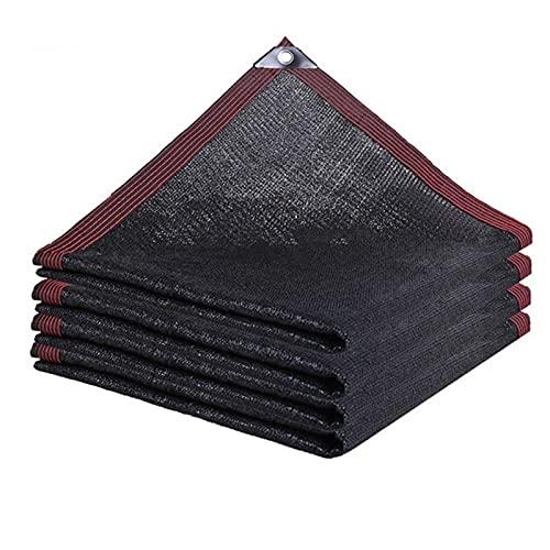 PPCERY Pergola Cover Canopy Shade Tessuto Tessuto Sole Ombra Panno Impermeabile Giardino Reticolato Mesh con Occhielli (Color : 2x3 10balls)