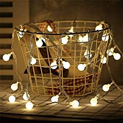 Danslesbls LED Globe String Lights Fairy Twinkle Waterproof Light String with & 43Ft 100 LED Warm, Perfect for Indoor and Outdoor Use with 30V Low Voltage Transformer (Plug) by Danslesbls