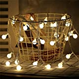 Danslesbls LED Globe String Lights Fairy Twinkle Waterproof Light String with & 43Ft 100 LED Warm, Perfect for Indoor and Outdoor Use with 30V Low Voltage Transformer (Globe String Lights)
