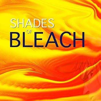 Shades of Bleach