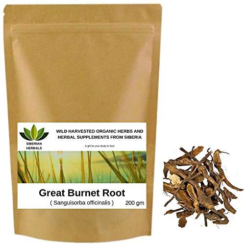 Wild Harvested Organic Great Burnet Root Sanguisorba officinalis КРОВОХЛЕБКА from Altai Mountains, Siberia, Russia. (200 gm) (Best Of Kumar Sanu Hindi Webmusic)