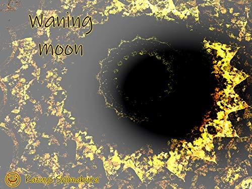デジタル画集 Waning moon デジタル画集 嶋倉和代