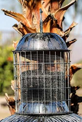 Skinny Squirrel Best Squirrel Proof Bird Feeder - 100% Guaranteed! Large & Simple-to-Hang or Pole Mount - Works Great for Suet, Finch, Blue Jays, and All Other Birds Feeders are #1 for a Reason!