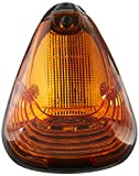 Recon 264143AM Cab Lights
